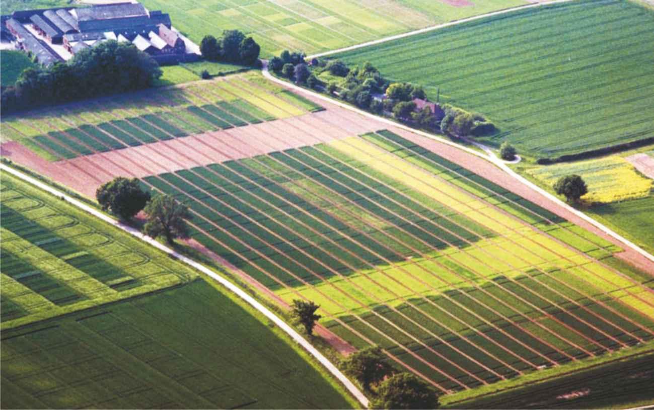 bio-mineral fertilizers