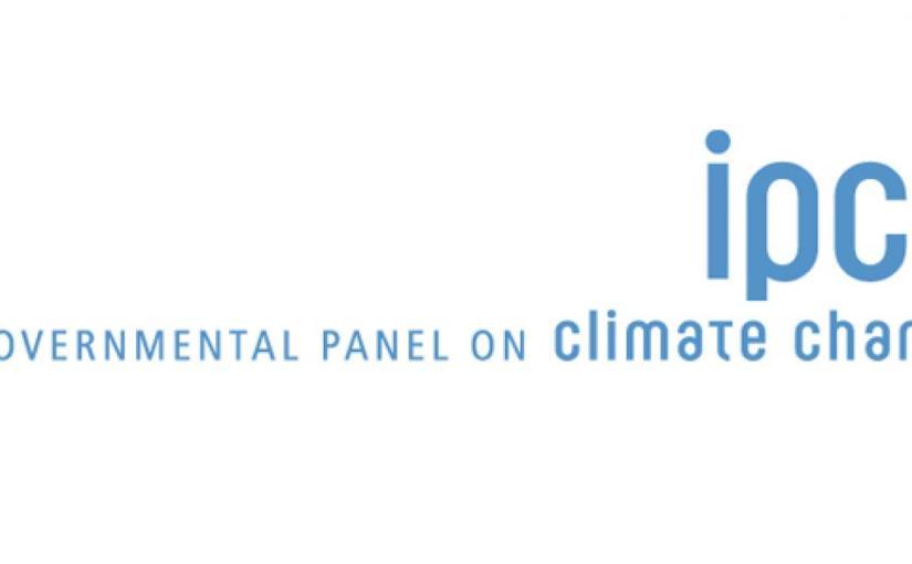 UN Report Warns of Clash Between Bioenergy andFood