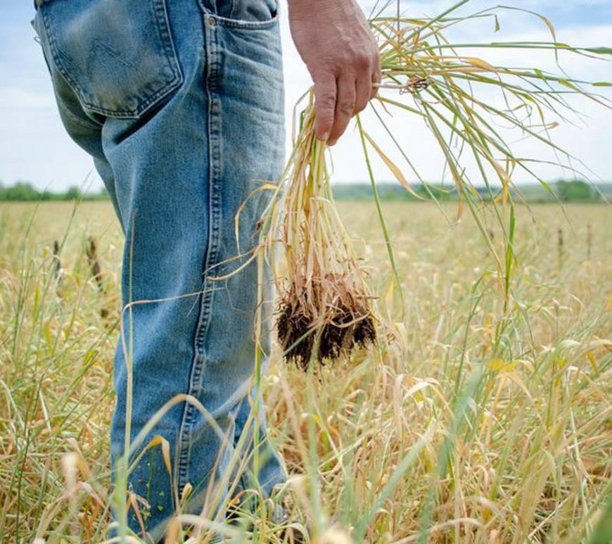 US Biofuel plan backlash agriculture